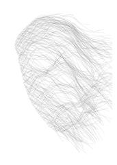 masque no. 1 (alexy) det(w)