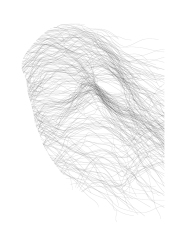 masque no. 17 (alexy) det(w)